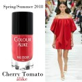 667 cherry tomato and fashion.jpg